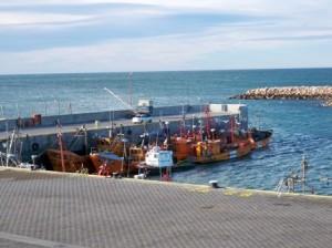 Obreros de la industria pesquera de Chubut, otro triunfo de los trabajadores