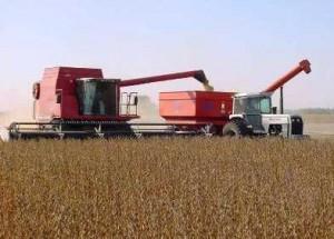 """""""Proyecto estratégico agropecuario""""  A favor de los monopolios y contra el pueblo"""
