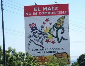 Biocombustibles: Ganancias para los monopolios, hambre para los pueblos
