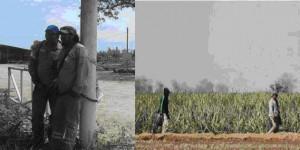 Triunfo de obreros rurales en El Tabacal