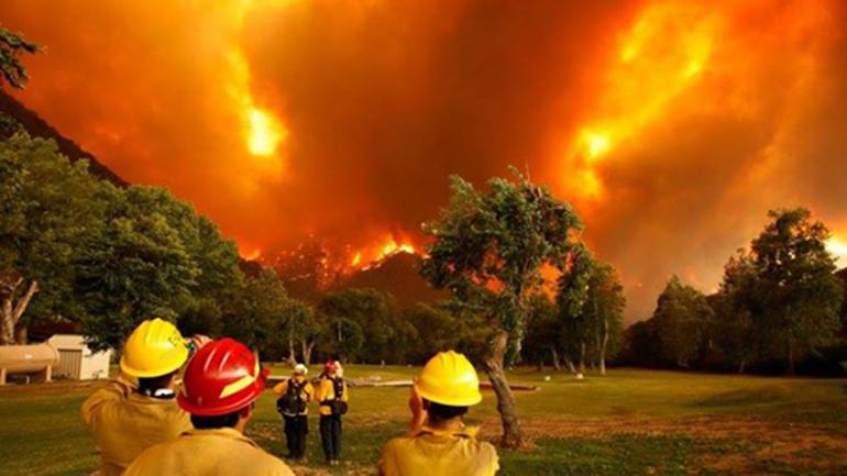 Incendios en Chubut: negocios, destrucción e hipocresía burguesa