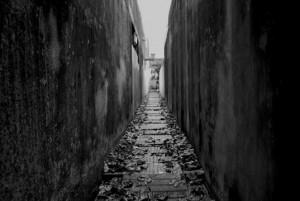 Detrás de la burguesía vamos a un callejón sin salida.