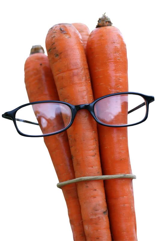 """La """"zanahoria"""" de las elecciones y las aspiraciones del pueblo"""